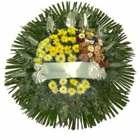 Corona Clasica
